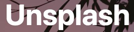 unsplash company blog